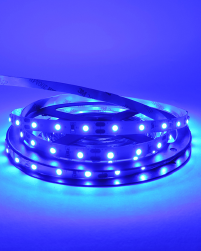12V Indoor Decorative LED Strips