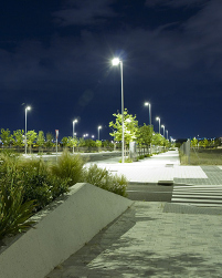 Landscape and Pathway Lights